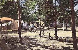 Cpsm Grand Format CONFLANS SAINTE HONORINE - Le Camping - Conflans Saint Honorine