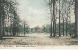 Bruxelles - Lac Du Bois De La Cambre - Forests, Parks
