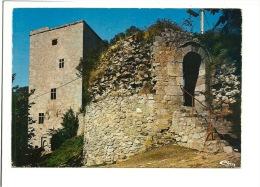 Beaumont La Poterne Et La Tour Salamandre - Evere