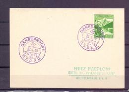 Deutsches Reich - Kreistag Der NSDAP - Gänserndorf 23/4/39  (RM5470) - Canards