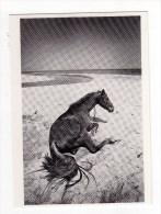 BRUNO JARRET - ESPAGNE 1971 - Photographie