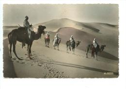 Scènes Et Types : Patrouille En Observation N°50/007 La Cigogne (pour Le Maroc) Dentelée - Sahara Occidental