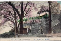 ASIE - JAPON - CHERRY BLOSSOM AT NOGE HILL YOKOHAMA - Yokohama