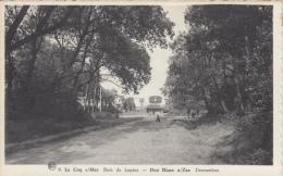 De Haan   Dennenbos      Scan 7491 - De Haan