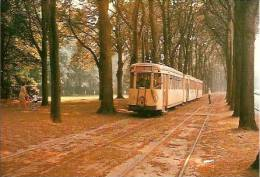 KOEKELBERG-avenue des gloires nationales TRAM ZELE-ASSE-AALST