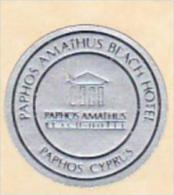 CYPRUS PAPHOS PAPHOS AMATHUS BEACH HOTEL VINTAGE LUGGAGE LABEL