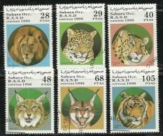 Big Cats - Big Cats (cats Of Prey)