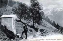 ENGELBERG - Am Weg Nach Dem Schwand, Gel.1904 - OW Obwalden