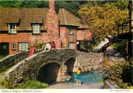 Allerford, Somerset, England Postcard John Hinde Unposted #1 - Autres