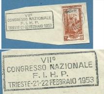 """SPORT PATTINAGGIO - ANNULLO TARGHETTA """" VII CONGRESSO NAZIONALE F.I.H.P. TRIESTE 1953 - Pattinaggio Artistico"""