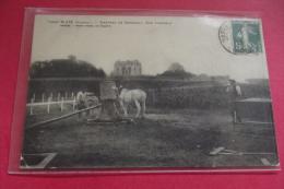 Cp Rare  Blaye Chateau De Segonzac Son Vignoble Cheval , Pressoir ? - Blaye