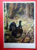 Illustration By A. Komarov - Western Capercaillie - Tetrao Urogallus - Birds - 1975 - Russia USSR - Unused - Oiseaux