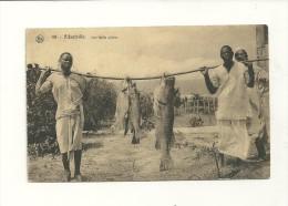 Altberville ; Une Belle Pêche - Other