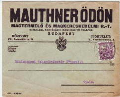 Hungarian Mauthner Company Letter Mailed 1930, From Budapest  To Gyula