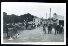 Cpa D´ Algérie Port Aux Poules Avenue De La Gare ...  Marsat El Hadjadj Bethioua Oran    TRIS6 - Oran