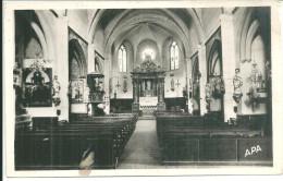 La Palme Intérieur De L'église - France
