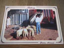 79-   Parthenay Le Marché Aux Moutons - Parthenay