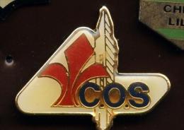 """LILLE """"C.O.S """"    Neuf  Ble1 - Steden"""