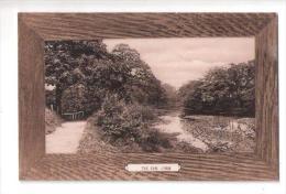 THE DAM Lymm LIM Nr Warrington UNUSED CHESHIRE POSTCARD - England