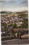 CPSM Animée - Fès (Maroc) - Vue Générale Prise De La Colline Des Andalous - Fez