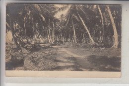 HONDURAS - LA CEIBA, Photo-AK, 1913 - Honduras