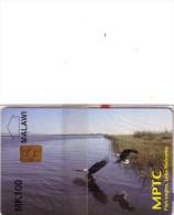 MALAWI MPTC FISH EAGLE AIGLE LAKE MALOMBE MK100 NSB MINT IN BLISTER RARE