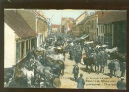 Thourout - Thorhout - Torhout  : Zuidstraat Tijdens Eene Peerdefeest   -  D.V.D. N°8920 Gekleurd - Torhout