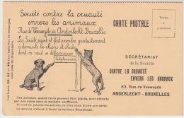 21986g SOCIETE CONTRE La CRUAUTE Envers Les ANIMAUX - 6 Rue De Veeweyde - Bruxelles - Carte Publicitaire - Anderlecht