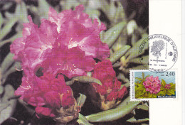 Carte Maximum FRANCE N° Yvert  2849 (RHODODENDRON) Obl Sp Ill Salon D'Automne - 1990-99