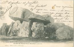 Montguyon  Dolmen De Pierre Folle Coté Sud - France