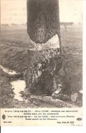 GUERRE 1914-15-16-17 6 DANS L OISE - RETRAITE DES ALLEMANDS ARBRES SCIES PAR LES ALLEMANDS - Guerre 1914-18