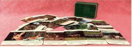 Tier-Quartett Aus Den 1970er Jahren  - Komplett Mit 36 Spielkarten - Denk- Und Knobelspiele