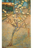 Van Gogh, Vincent  Pear Tree In Bloom Van Gogh Museum Amsterdam Art Postcard - Peintures & Tableaux