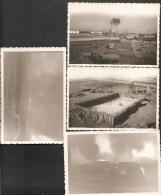 """Lot De 7 Photos, Même Petite  Archive"""". LYON, Défilé - FEYZIN, Raffinerie,Piscine, Magazin Electricité - Incendie? - Autres"""
