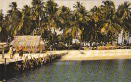 Panama One Of The Islands Of San Blas