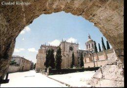 "CP ESPAGNE : CUIDAD RODRIGO "" Porte D Amayuelas "" - Salamanca"