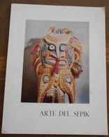 Arte Del Sepik - Livres, BD, Revues