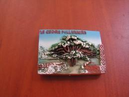 Lebanon Magnet Souvenir Cedar From Resin, Liban Magnetic - Tourism