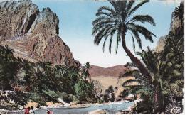 CPSM L'Oued Et Les Gorges - 1957 (5815) - El-Oued