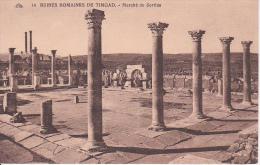 CPA Timgad - Ruines Romaines De Timgad - Marché De Sertius (5831) - Batna