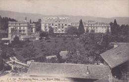 Cp , 01 , DIVONNE-les-BAINS , Le Grand Hôtel - Divonne Les Bains