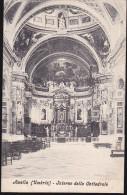 CPA - (Italie) Amelia - Interno Della Cattedrale - Autres Villes