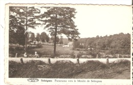 Seloignes - Momignies
