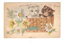 CPA  Fantaisie Chats : Deux Chatons Dans Un Panier + Marguerites - Signé Bernet - Gatti