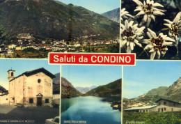 CONDINO (Trento). Vedute. Vg. - Trento