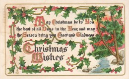 NOEL - Christmas Wishes- Gaufrée - Ed. Tuck & Sons - Voyagée 1912 - Noël