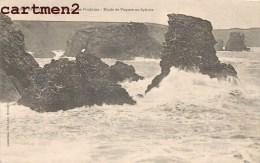 BELLE-ISLE LA POINTE DES POULAINS ETUDE DE VAGUES AU SPHINX BELLE-ILE-EN-MER 56 - Belle Ile En Mer
