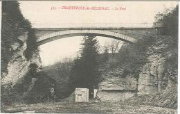 CPA 01 - Chartreuse De Sélignac - Le Pont - France