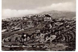 CO197 POLIZZI GENEROSA (Palermo)  PANORAMA - Palermo
