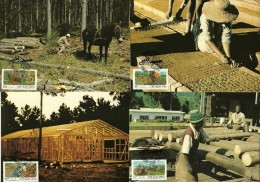 South Africa / Venda - 1986 Forestry Maximum Cards - Full Set Of 4 - Bauernhöfe